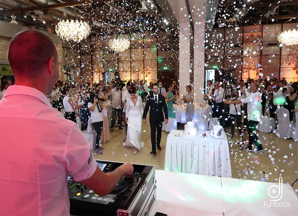 wedding_party_14